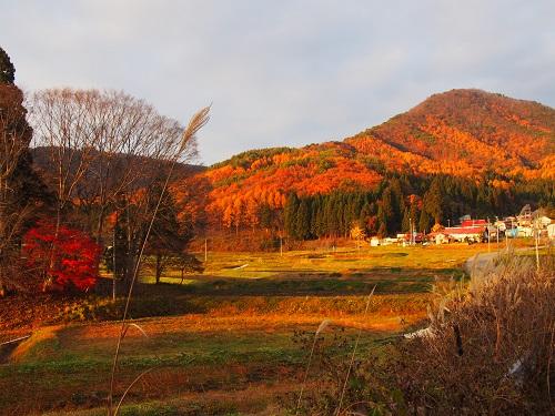 satoyamafuukei3151112.jpg