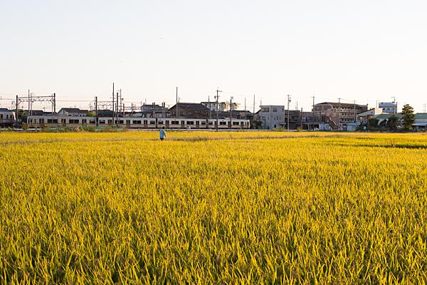 鉄道風景-10