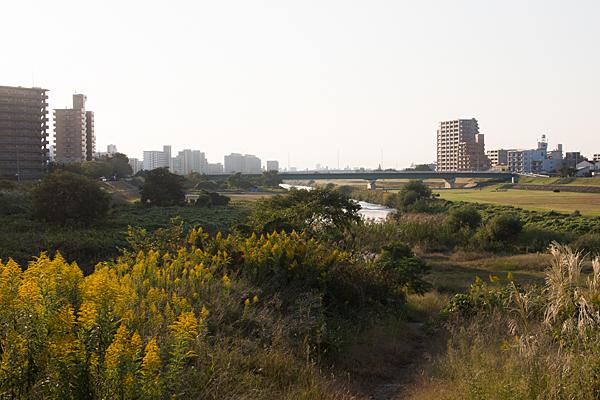 川沿い風景-9