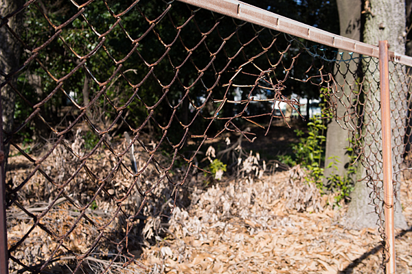 破れたフェンス