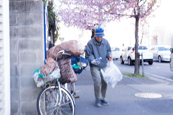 桜と空き缶集め