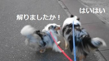 MOV_2920_000(5).jpg