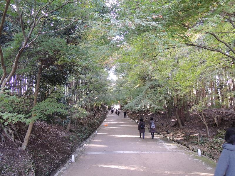 西大門から金堂への道