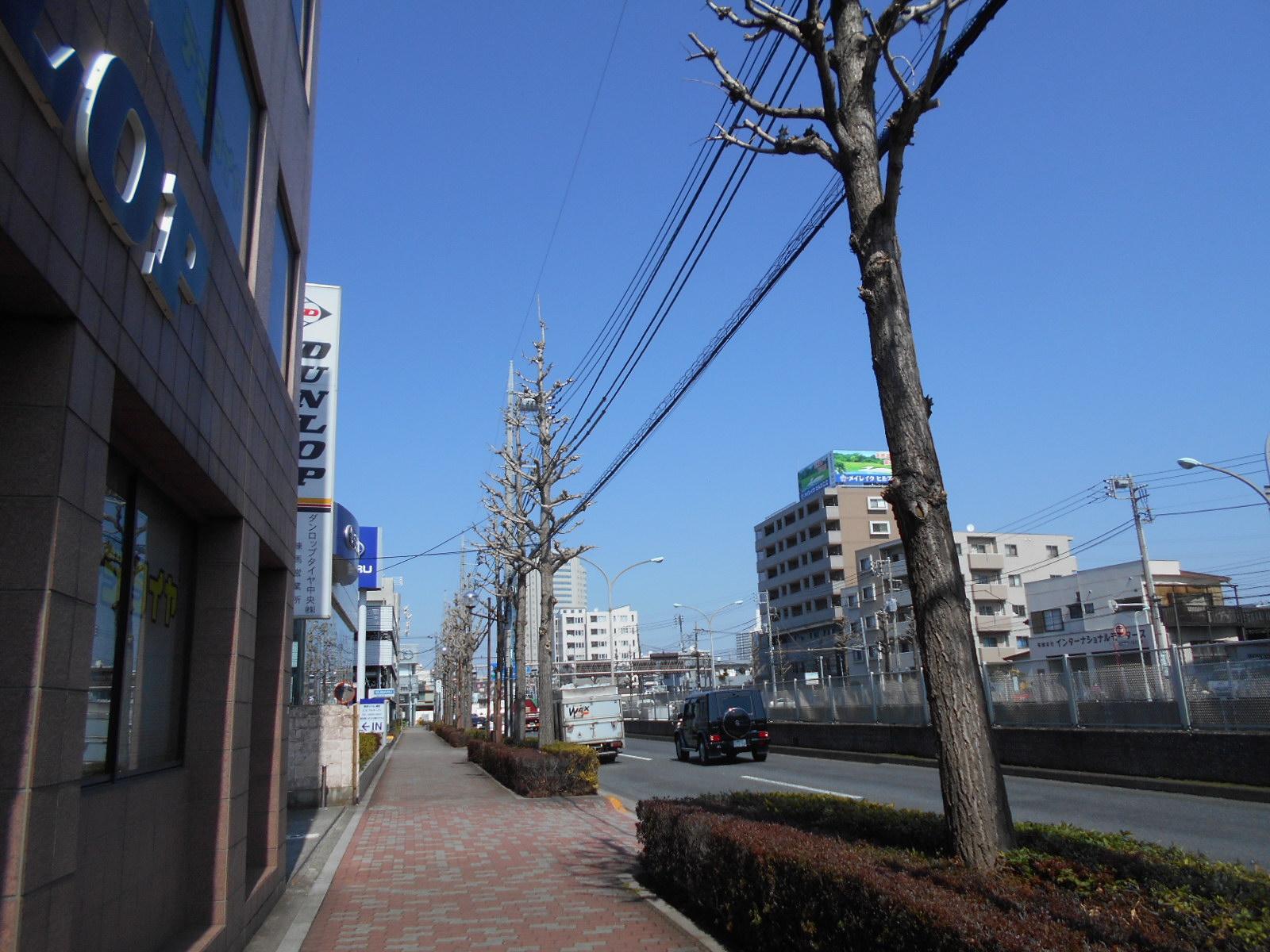 DSCN7320.jpg