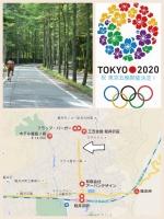 クルマの撮影スポット 軽井沢 三笠通り カラマツ
