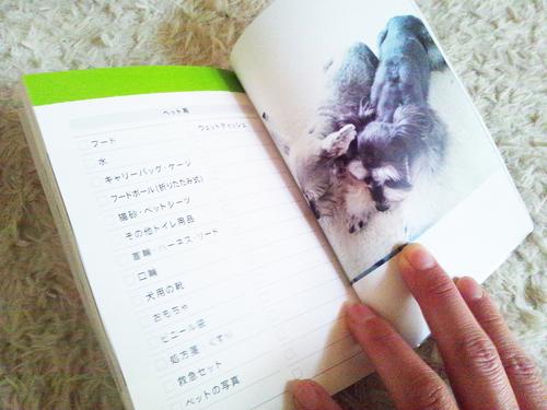 20160327003.jpg