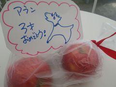 [写真]アランの3歳の誕生日プレゼントとして近所の方からいただいたバースデーカードと赤いリンゴ