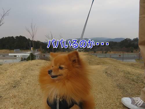 s-IMG_7141.jpg