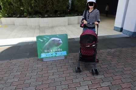鳥羽水族館4
