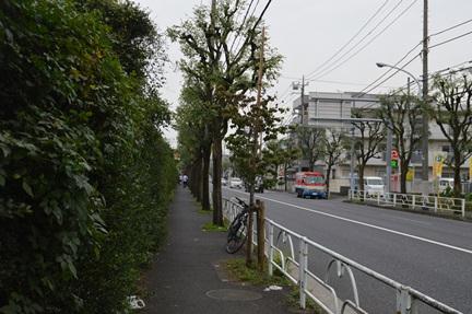 2015-10-10_15.jpg