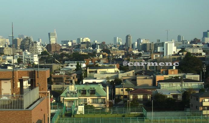 広い東京の町の空