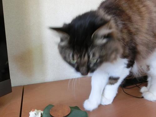 猫フィギュア5