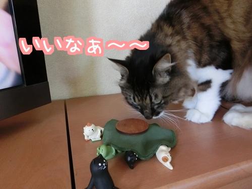 猫フィギュア~4
