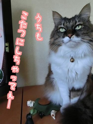 猫フィギュア~7