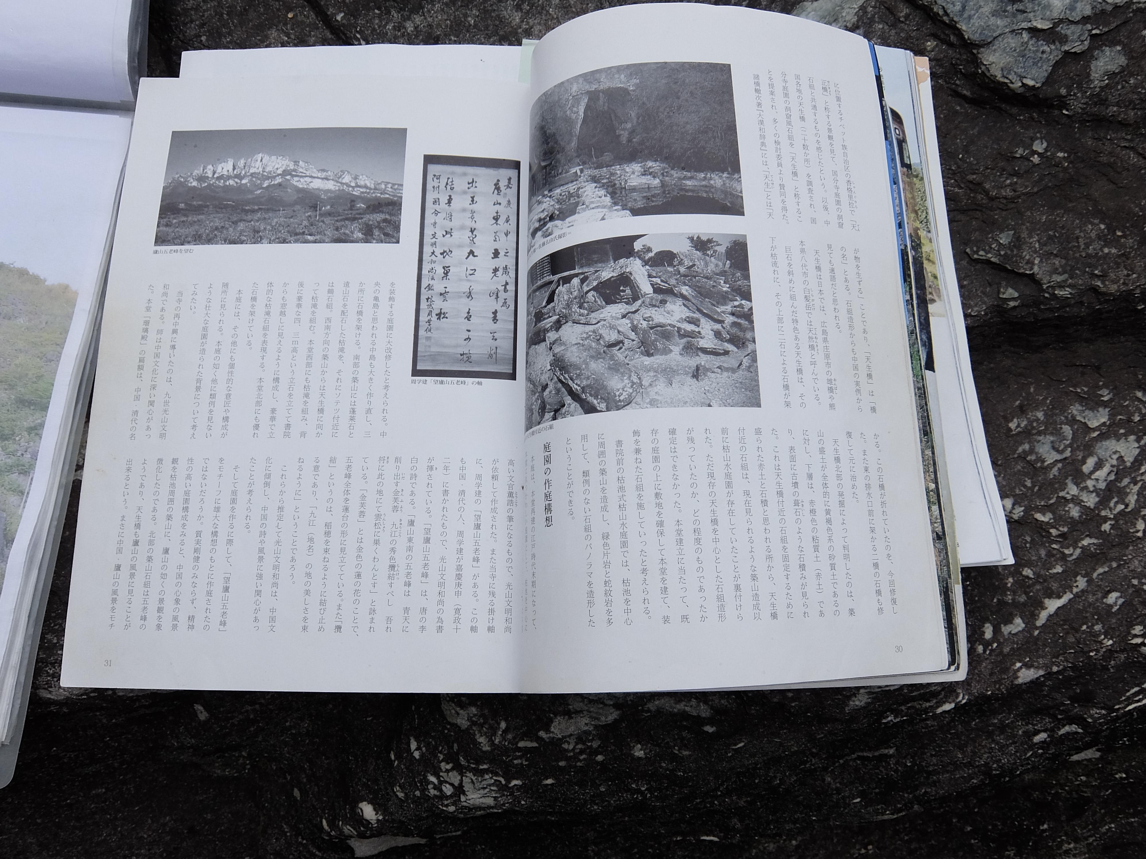 DSCF9091.jpg