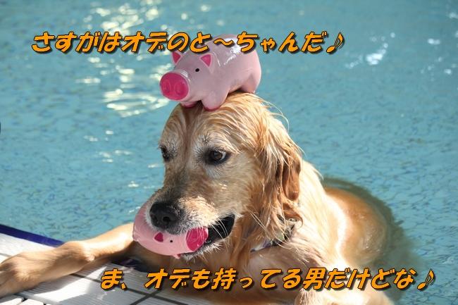 5_20160322183323766.jpg