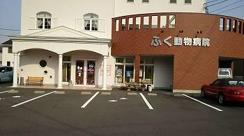 ふく動物病院 DSC_0817