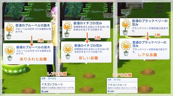fertilizer-5.jpg