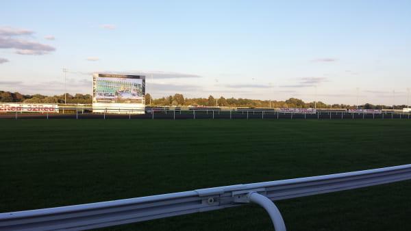 ケンプトンパーク競馬場_レースコース