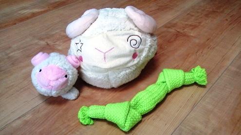 TARO&JIROにおもちゃを買ってきましたが…。