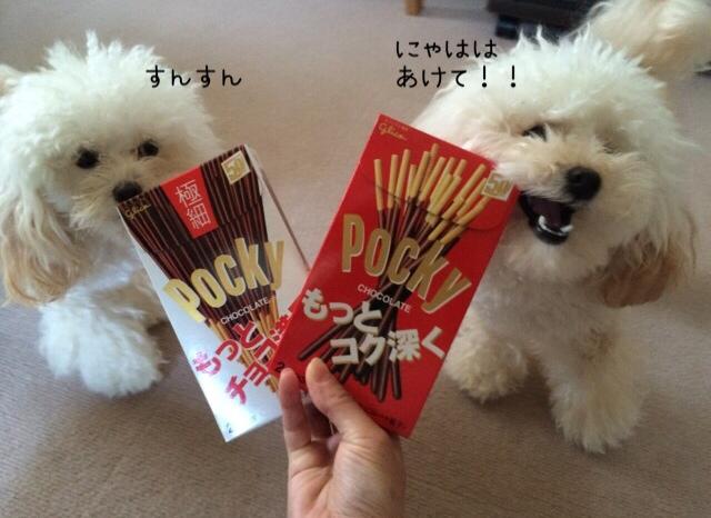 2015.11.11 ポッキー&プリッツの日