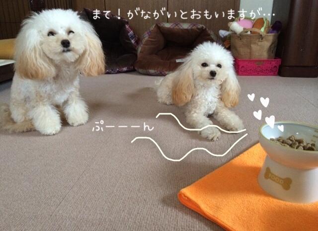 猫壱 ハッピーダイニング 犬用脚付フードボウル 1