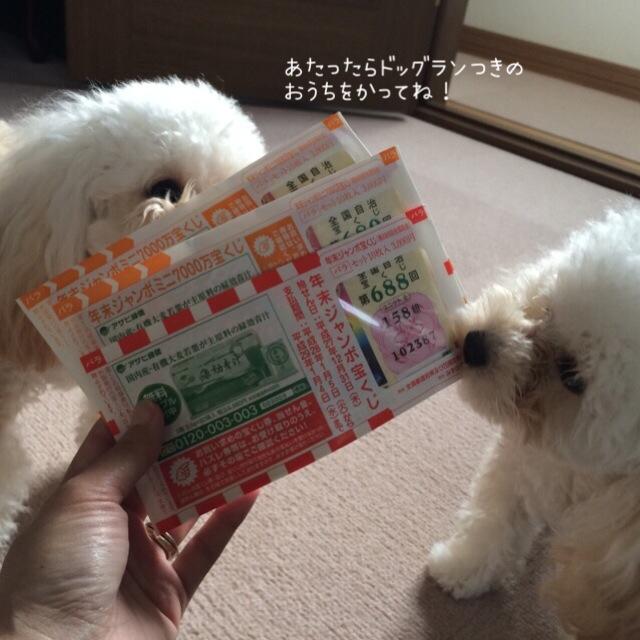 2015.12年末ジャンボ宝くじ