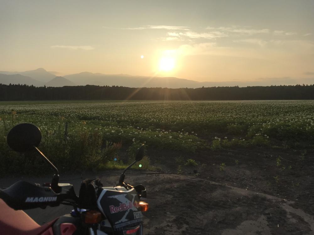 ジャガイモ畑と夕日とXR