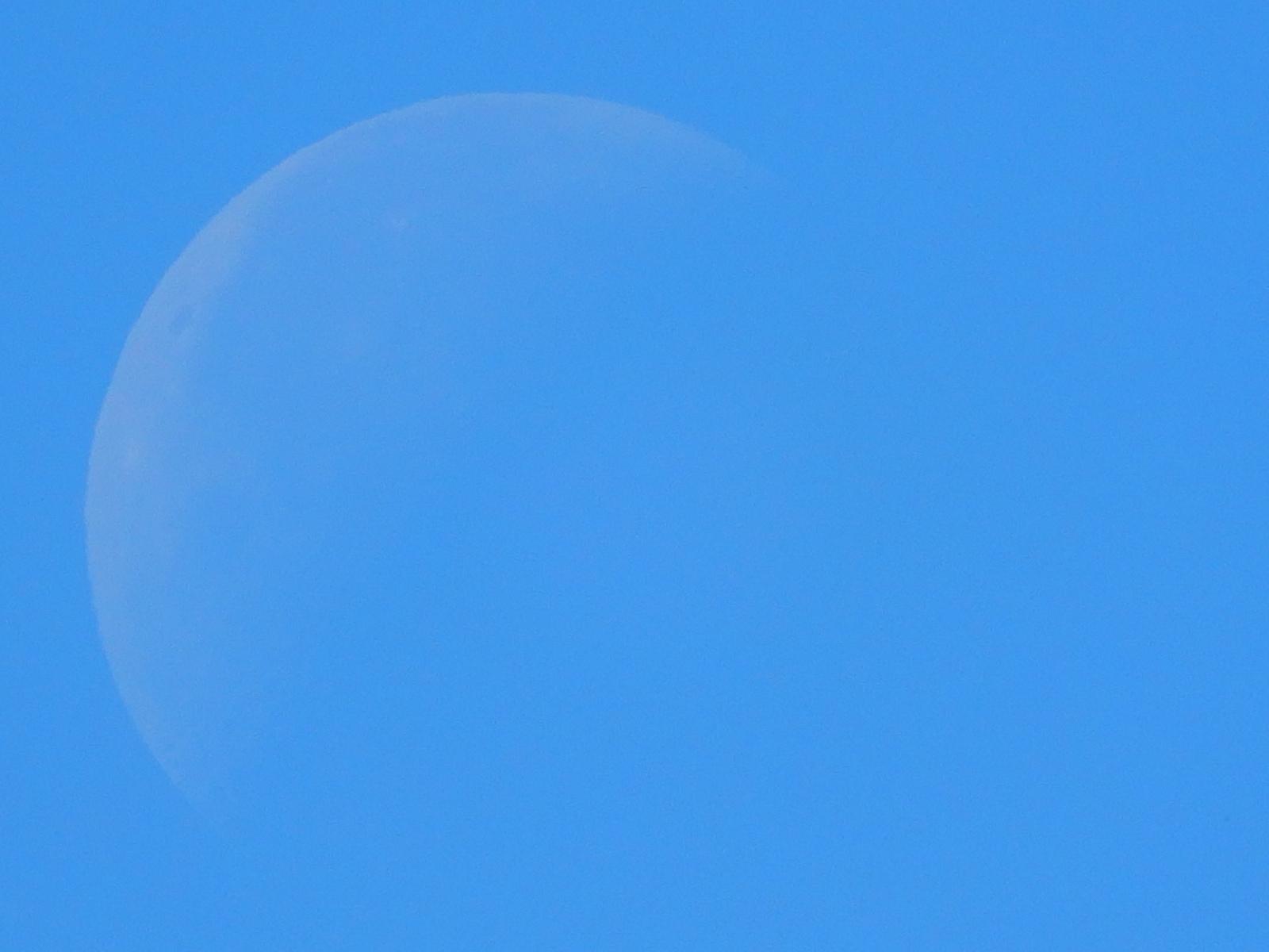 NikonクールピクスA900 昼間の月