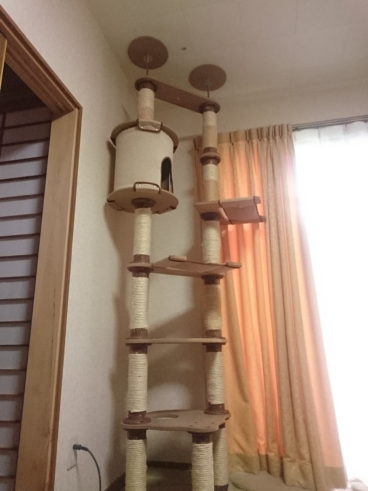 20151025-CatTower_After-X01.jpg