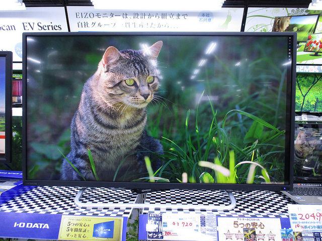 LCD-M4K401XVB_02.jpg