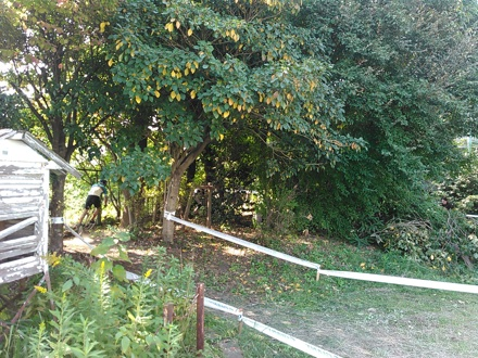 20151024_cours2.jpg