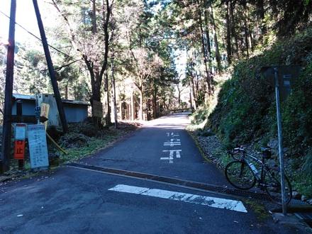 20151128_kuriyama1.jpg