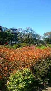 秋の味覚ツアー_004