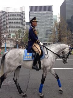 IMG_4047皇居騎馬隊