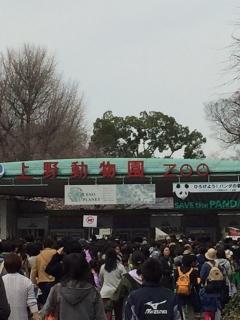 上野公園の桜_001