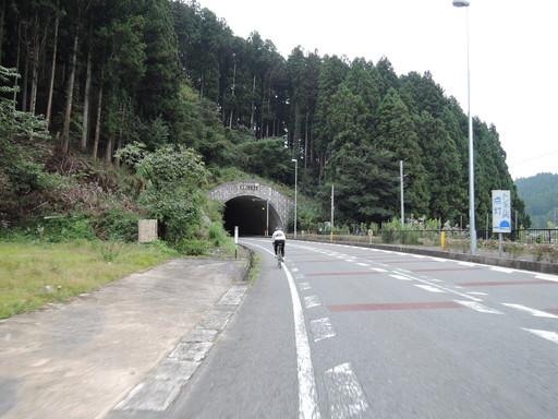 DSCN2246.jpg